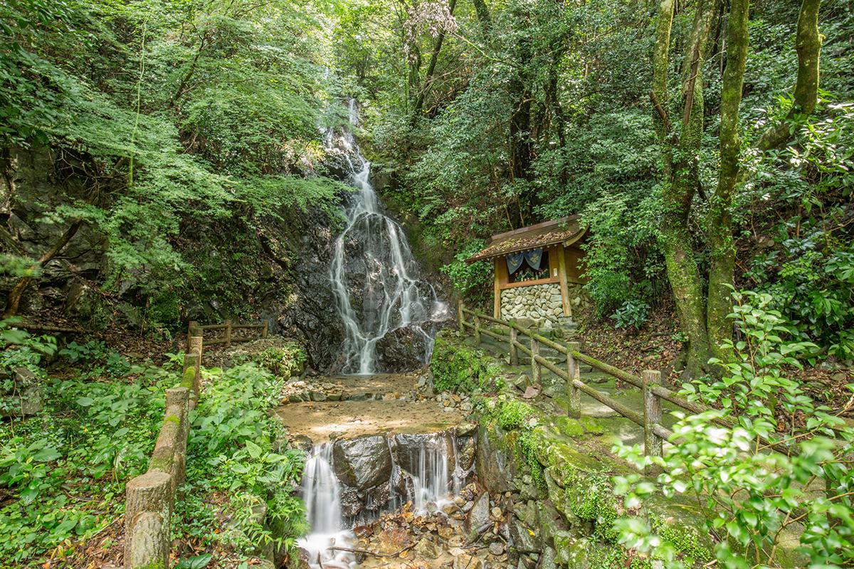 調音の滝滝開き